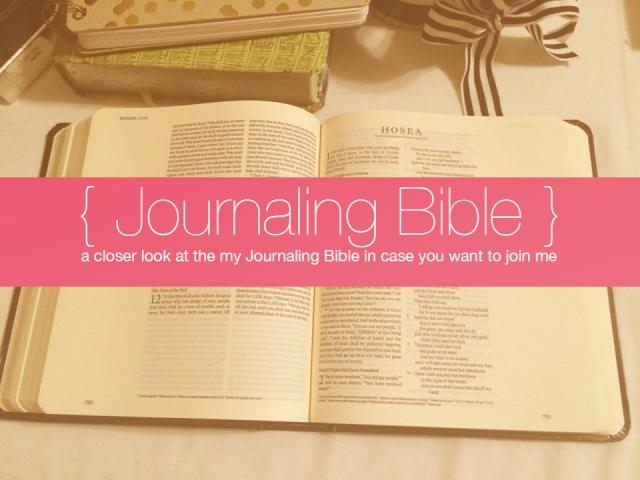 A Closer Look at my Journaling Bible | apileofashes.com