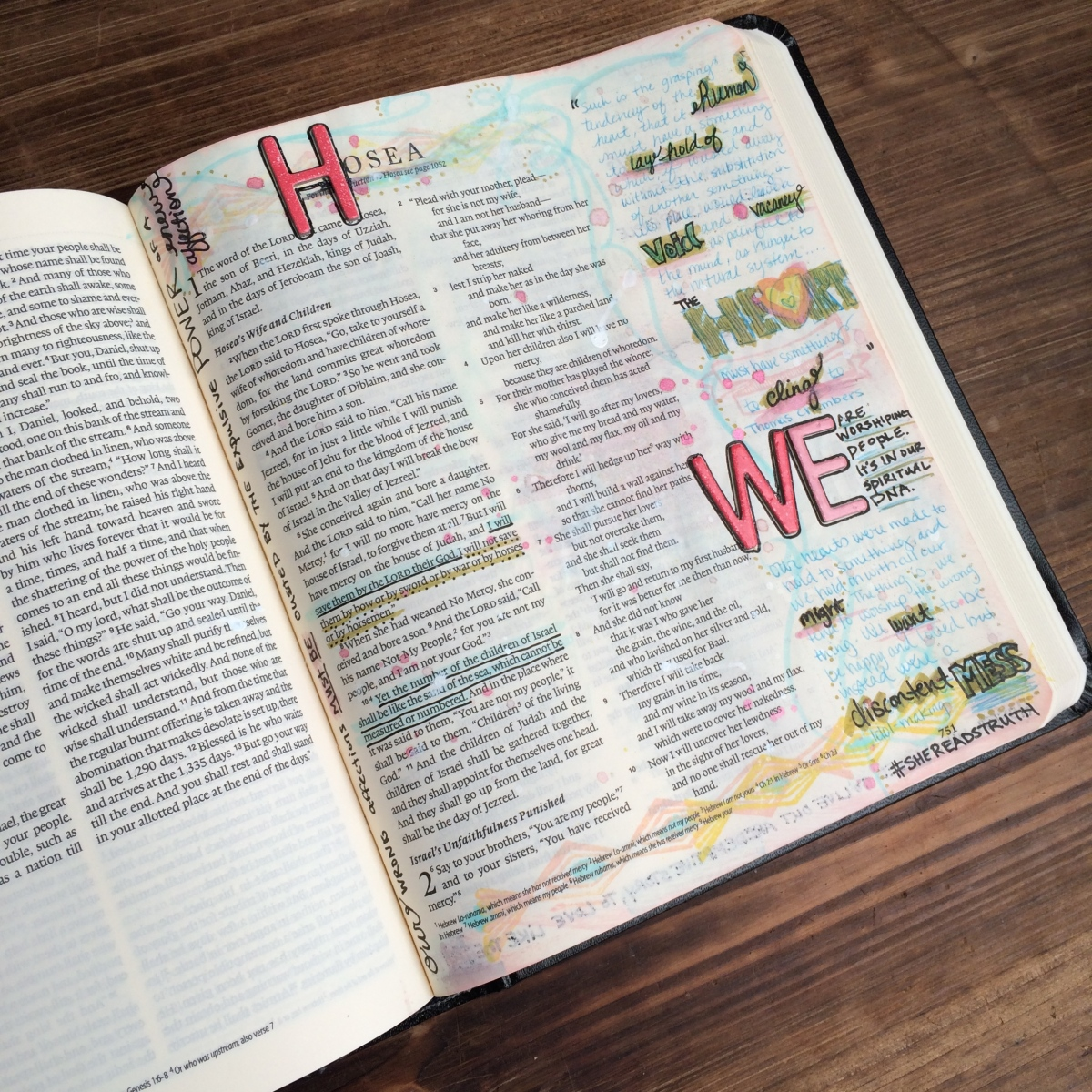 Journaling Bible | Study of Hosea Day 1