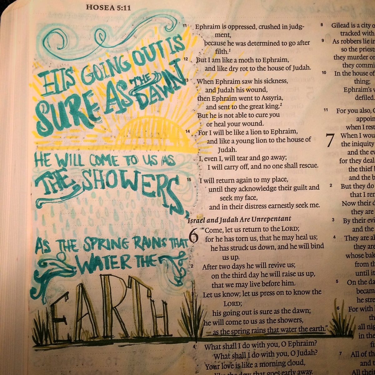 Journaling Bible | Hosea She Reads Truth