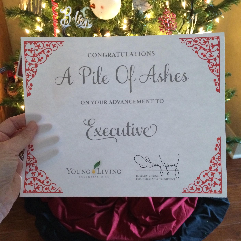 Executive   apileofashes.com