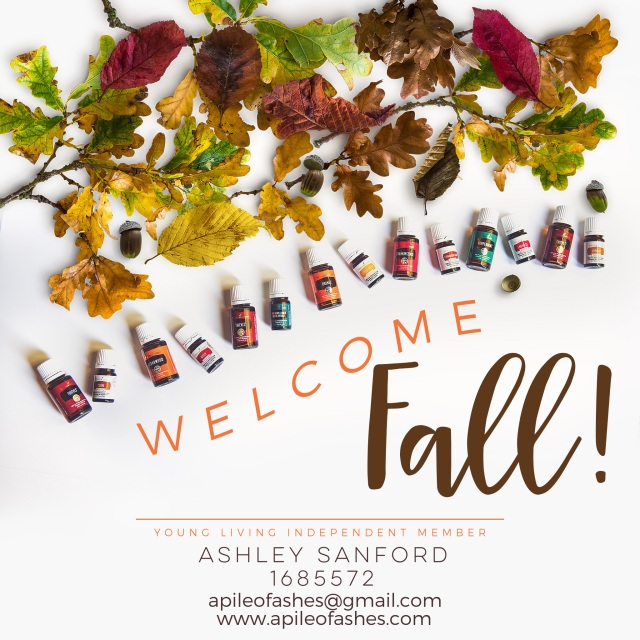 welcome-fall-graphic