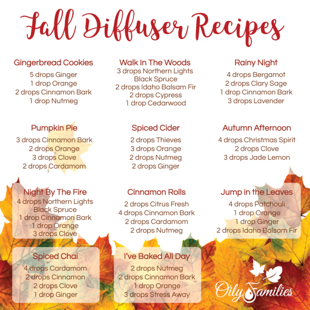 Diffuser-Recipes-Fall